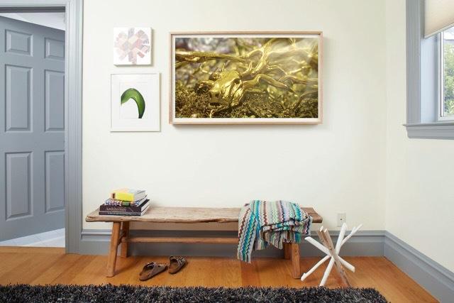 depict-frame